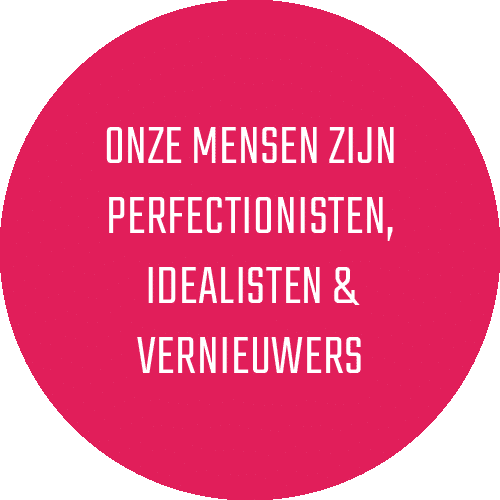 Perfectionisten idealisten vernieuwers